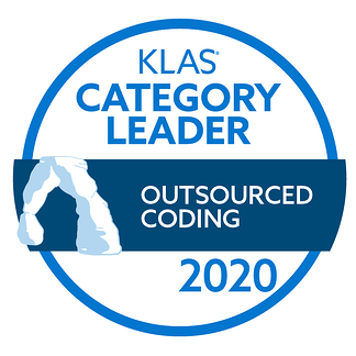 2020-category-leader-outsourced-coding
