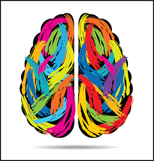 Colorful Brain Cropped PNG